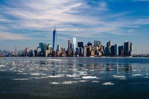 מגדלי ניו יורק